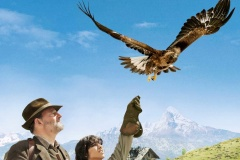 Cinémaginaire : l'aigle et l'enfant